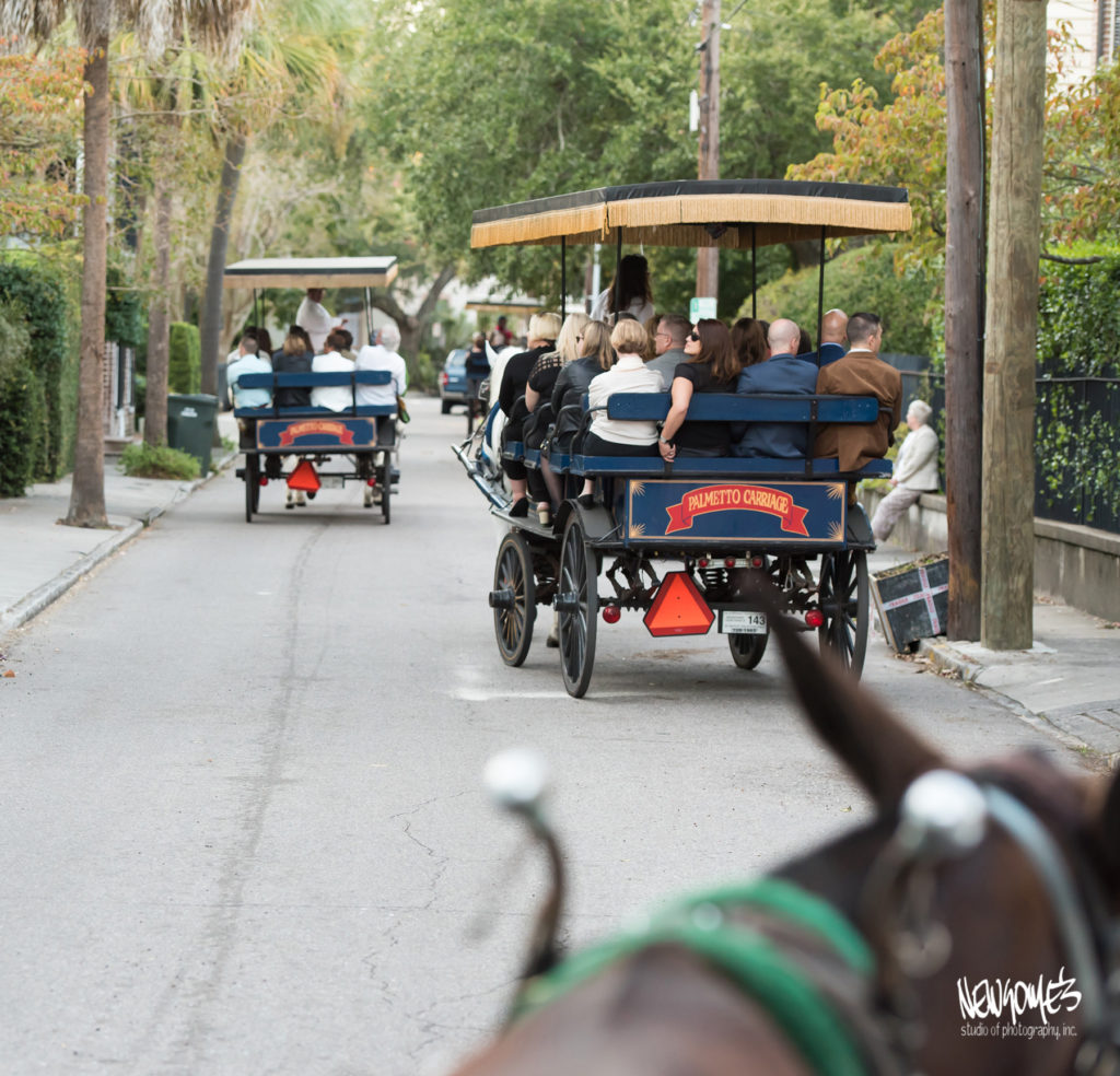 Horse and Buggy carriages with tourists